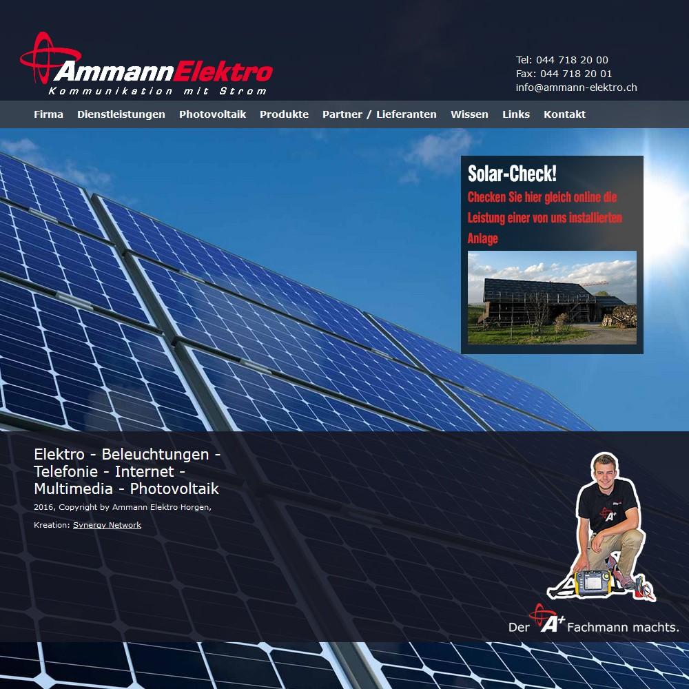 www.ammann-elektro.ch